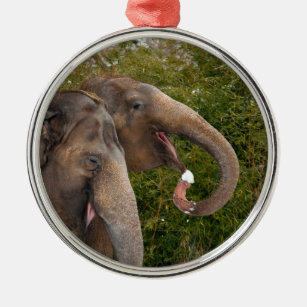 Two Smiling Indian elephants eating snow Christmas Ornament