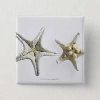 Two Thorny Starfish 15 Cm Square Badge
