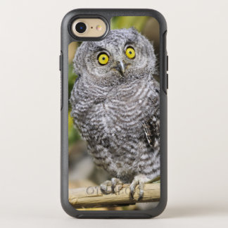Two-Week Old Baby Screetch-Owl OtterBox Symmetry iPhone 7 Case