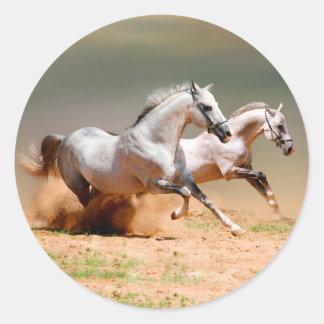 two white horses running classic round sticker