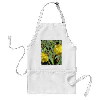 Two Yellow Daffodils Standard Apron