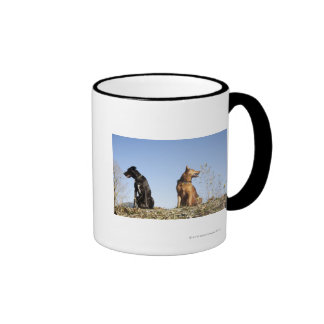 Two young dogs looking in opposite directions. ringer mug
