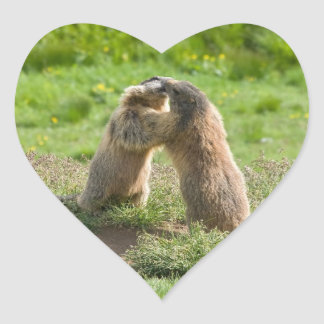 two young marmots heart sticker