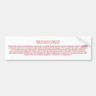 !!! U Create Declaration of Independence Car Bumper Sticker