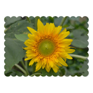 Ukranian Sunflowers Card