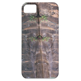 Uluru water hole reflection iPhone 5 cases