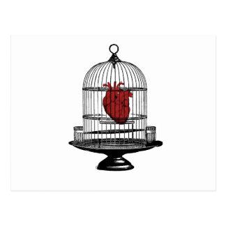 Uncage My Heart Postcard
