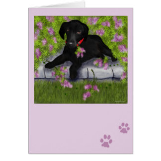 Under the Lilacs Greeting Card