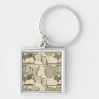 United States lithographed maps 2 Key Ring