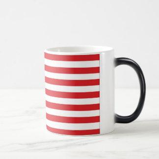 United States, Made in China Magic Mug