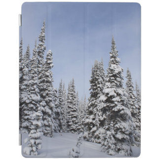 United States, Washington, snow covered trees iPad Cover
