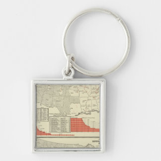 Universities, colleges Silver-Colored square key ring