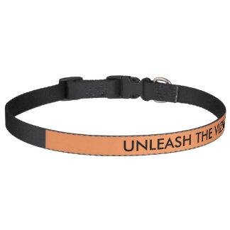 UNLEASH THE VIZSLA collar