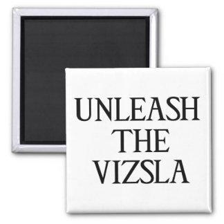 UNLEASH THE VIZSLA (Large Print) Square Magnet