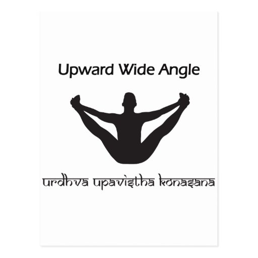 Upward Wide Angle Postcard
