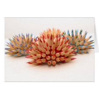 Urchins Greeting Card