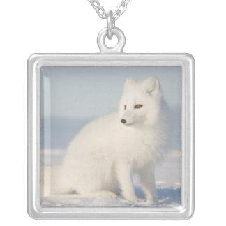 USA, Alaska, 1002 Coastal Plain of the Arctic 5 Silver Plated Necklace