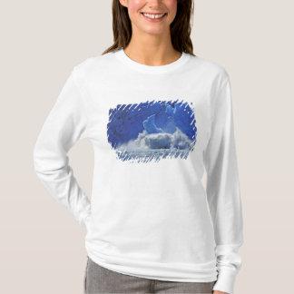 USA, Alaska, Juneau. Part of South Sawyer T-Shirt
