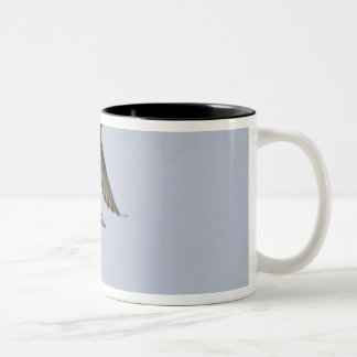 USA, Blaine, Washington. Male and female Two-Tone Coffee Mug
