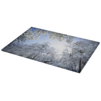 USA, California, Cleveland National Forest, Cutting Board