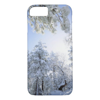 USA, California, Cleveland National Forest, iPhone 8/7 Case