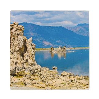 USA, California, Mono Lake South Tufa Reserve Wood Coaster