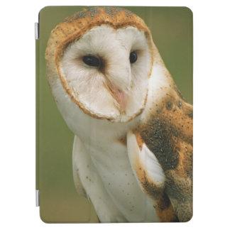 USA, Colorado, Broomfield. Barn owl iPad Air Cover