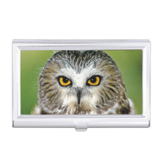 USA, Colorado. Close-up of northern saw-whet owl Business Card Holder