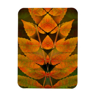 USA, Colorado, Lafayette. Autumn sumac montage Magnet