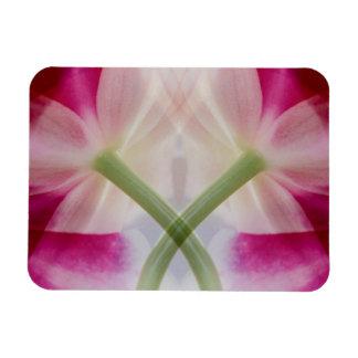 USA, Colorado, Lafayette. Orchid montage Magnet