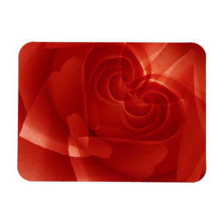 USA, Colorado, Lafayette. Red rose montage Magnet