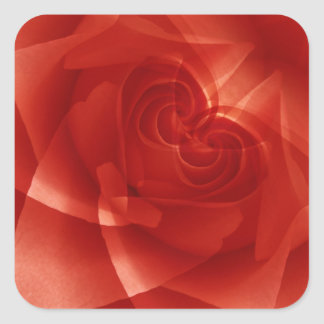 USA, Colorado, Lafayette. Red rose montage Square Sticker