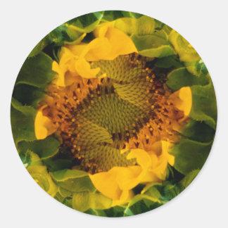 USA, Colorado, Lafayette. Sunflower montage Classic Round Sticker