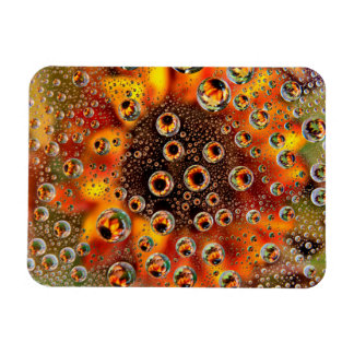 USA, Colorado, Lafayette. Water bubbles on glass 1 Magnet