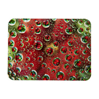 USA, Colorado, Lafayette. Water bubbles on glass 3 Magnet