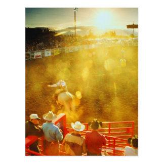 USA,elevated view of bull rider and cowboys at Postcard