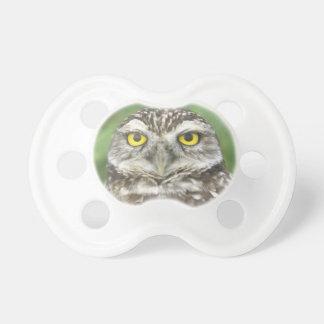 USA, Florida, Cape Coral, Burrowing Owl (Athene Dummy