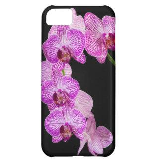 USA, Georgia, Savannah, Cluster Of Orchids 2 iPhone 5C Case
