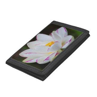 USA, Georgia, Savannah, Lootus Flower Blooming Trifold Wallet