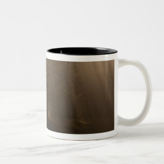 USA Great Smoky Mountain NP Tennessee trees in Two-Tone Mug