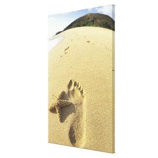 USA, Hawaii, Maui, Makena Beach, Footprint and Stretched Canvas Prints