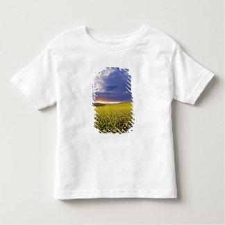 USA, Idaho, Swan Valley. A fiery sunset erupts Toddler T-Shirt
