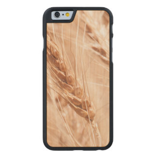 USA, Kansas, Wheat At Harvest Time Carved Maple iPhone 6 Case