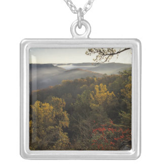 USA, Kentucky. Daniel Boone National Forest. Silver Plated Necklace
