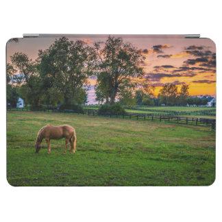 USA, Lexington, Kentucky. Lone horse at sunset 2 iPad Air Cover