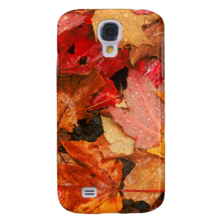 USA, Maine. Autumn maple leaves Galaxy S4 Case
