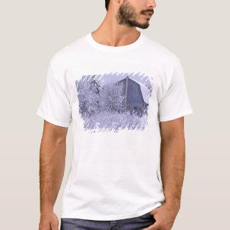 USA, Michigan, Rochester Hills. Snowy blue T-Shirt