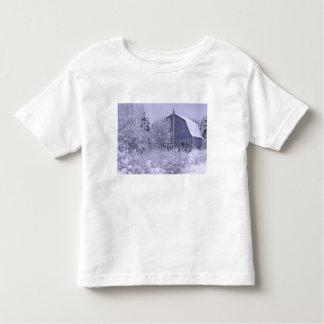 USA, Michigan, Rochester Hills. Snowy blue Toddler T-Shirt