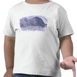 USA, Michigan, Rochester Hills. Snowy blue T Shirt