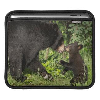 USA, Minnesota, Sandstone, Minnesota Wildlife 13 Sleeves For iPads